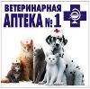 Ветеринарные аптеки в Кондоле